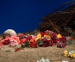 Beloved,  detail, installation, painted room, platform, sod, branches, roots, shrubs, silk flowers, bees wax, 2005-2006