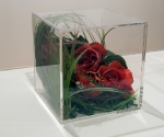 Vanitas #2 (red rose),  acrylic box, silk, plastic, bees wax, 2006