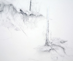 "Floating World I (detail), mylar drawing with graphite, gouache,  24 x 36"",  2011"